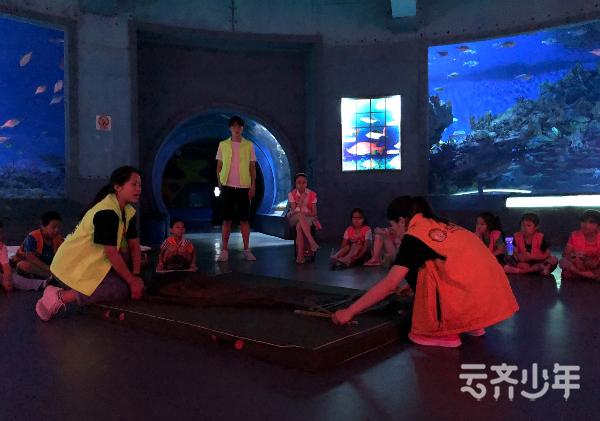 pingmukuaizhao 2019-01-10 12