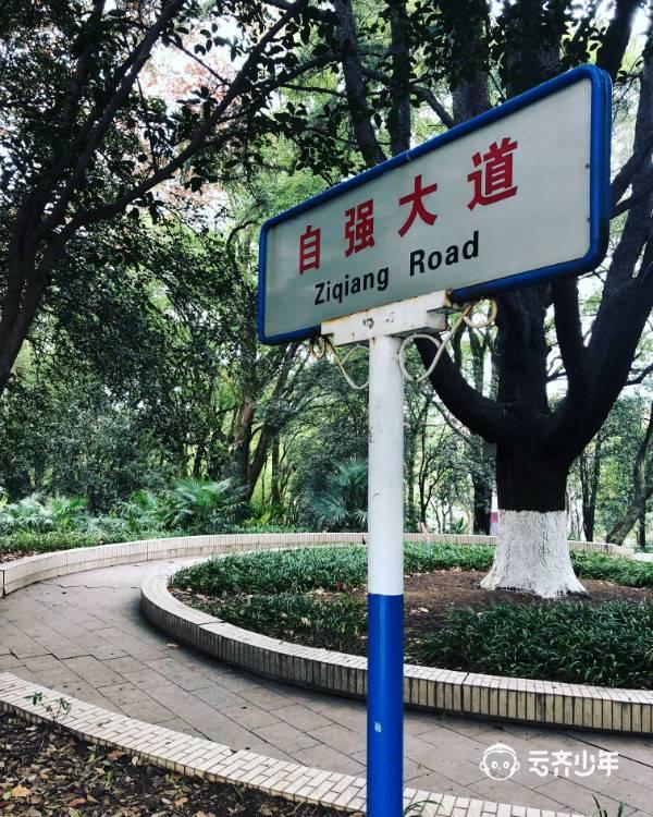 2019 yunqixuefudingxiang wuhandaxue15