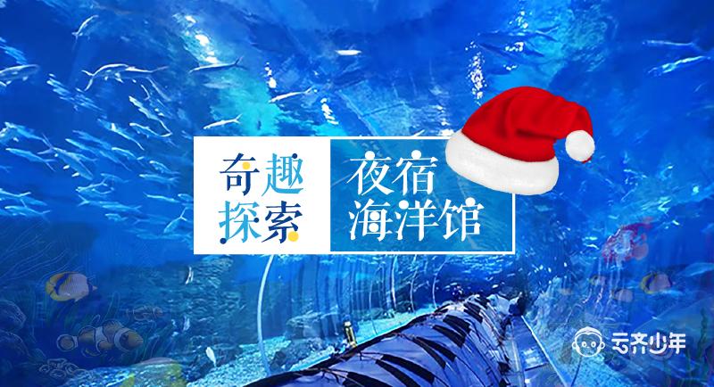 夜宿海洋馆,圣诞特别篇